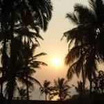 Heimweg , hier ist jeden abend ein wunderschöner Sonnenuntergang