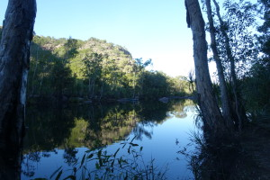 Crocodile land